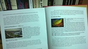 pagina din dictionarul ilustrat al artelor frumoase din Moldova